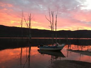 Lake Bellfield - Find Attractions