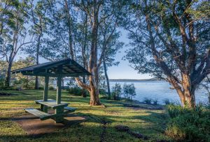 Queens Lake picnic area - Find Attractions