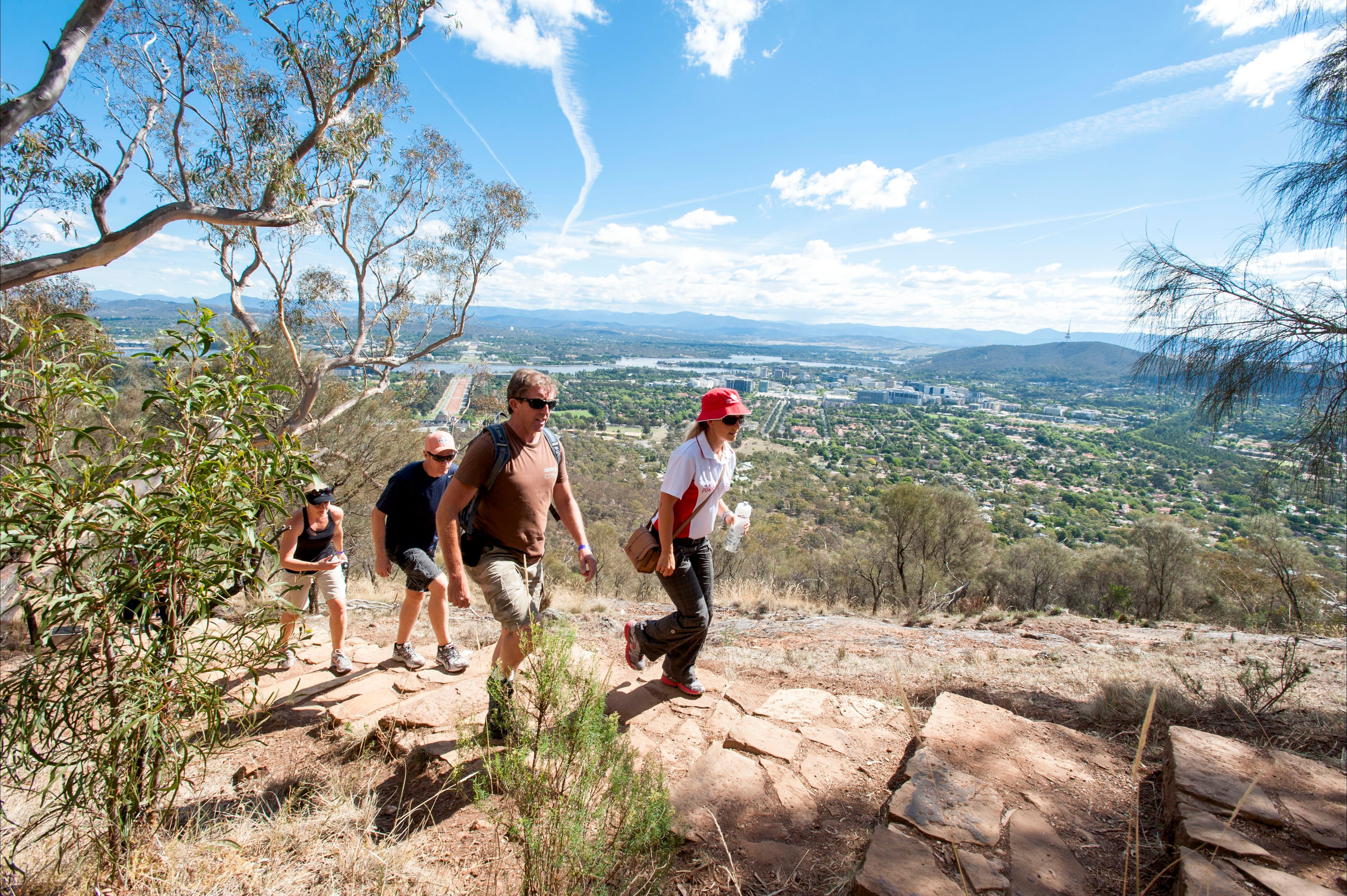 Mount Ainslie Lookout - Find Attractions