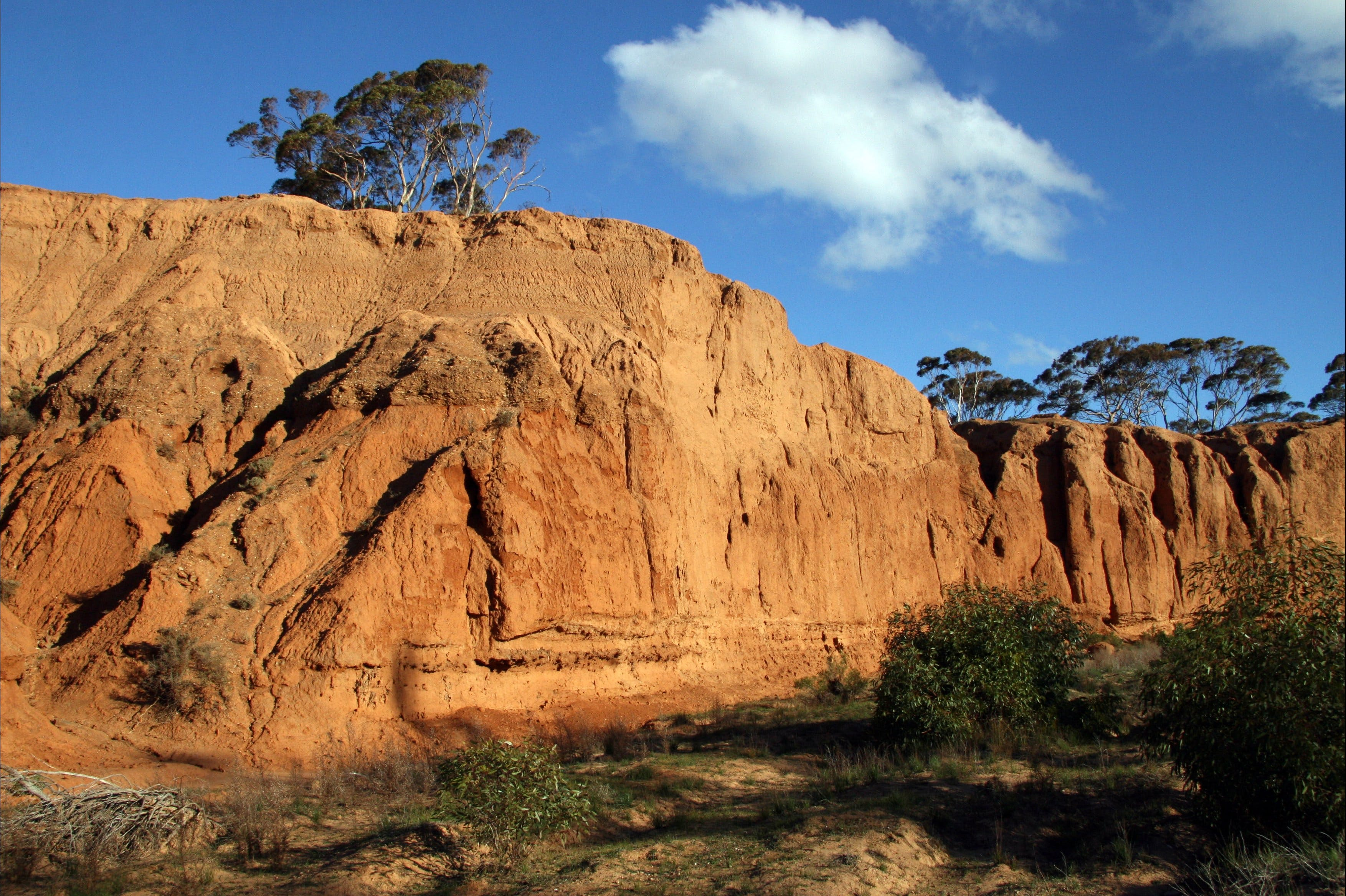 Red Banks Conservation Park - Find Attractions