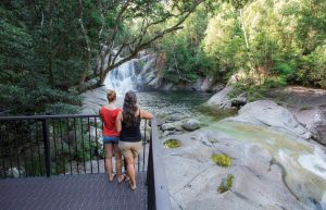 Josephine Falls walking track Wooroonooran National Park - Find Attractions