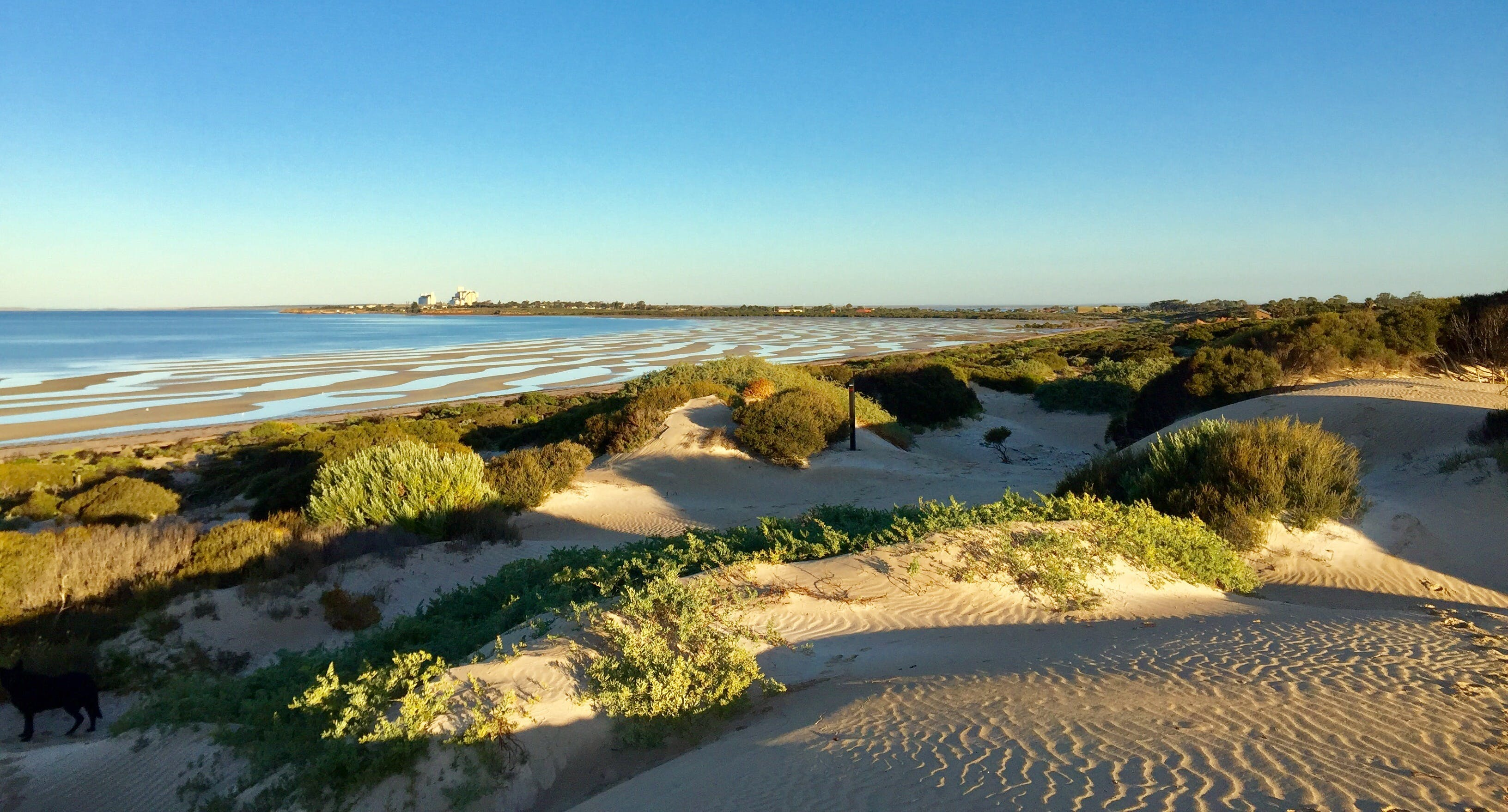 Shelly Beach Dune Walk Trail - Find Attractions