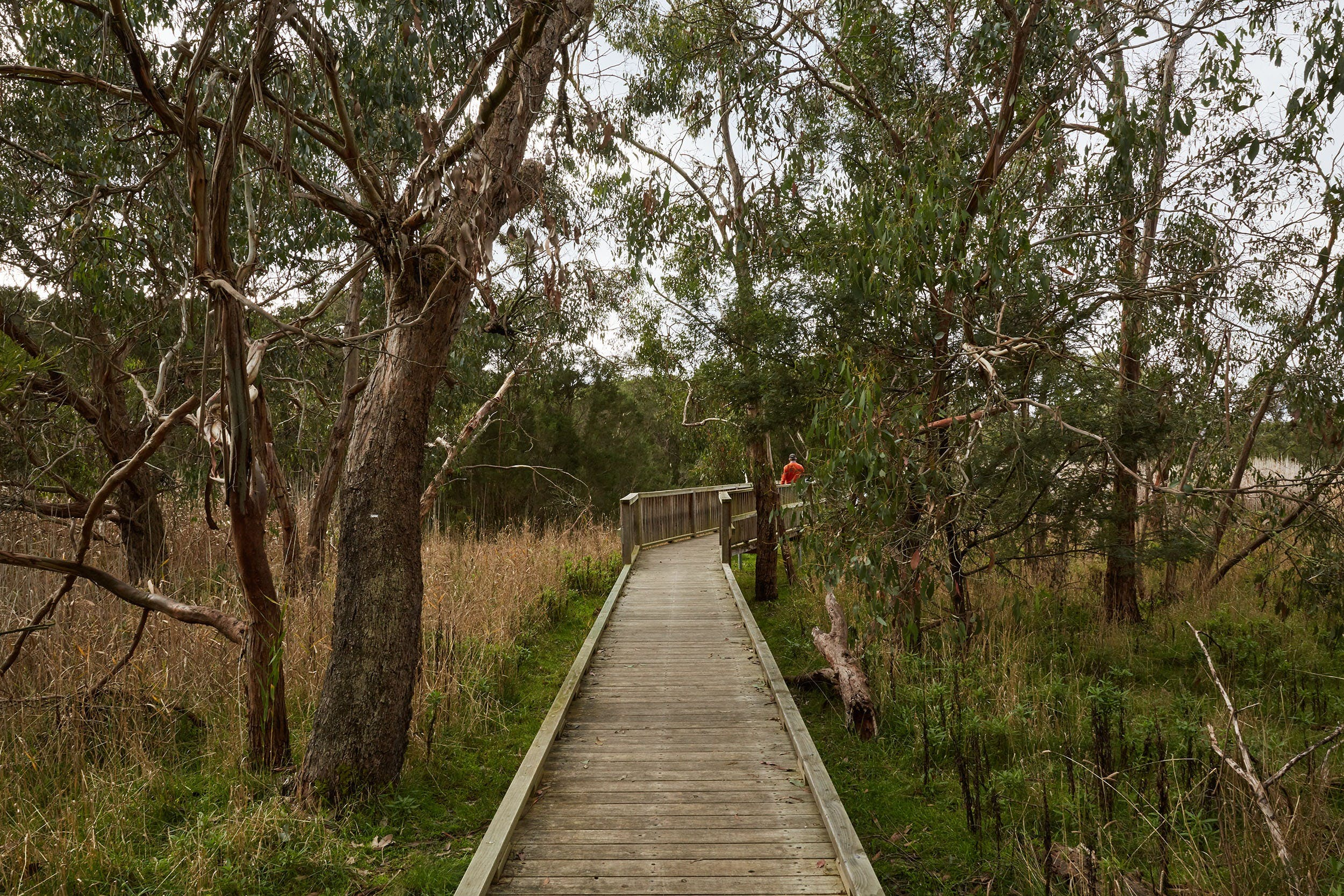 The Briars Park Walking Trails - Find Attractions