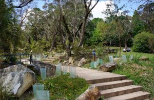 Wentworth Falls picnic area - Find Attractions