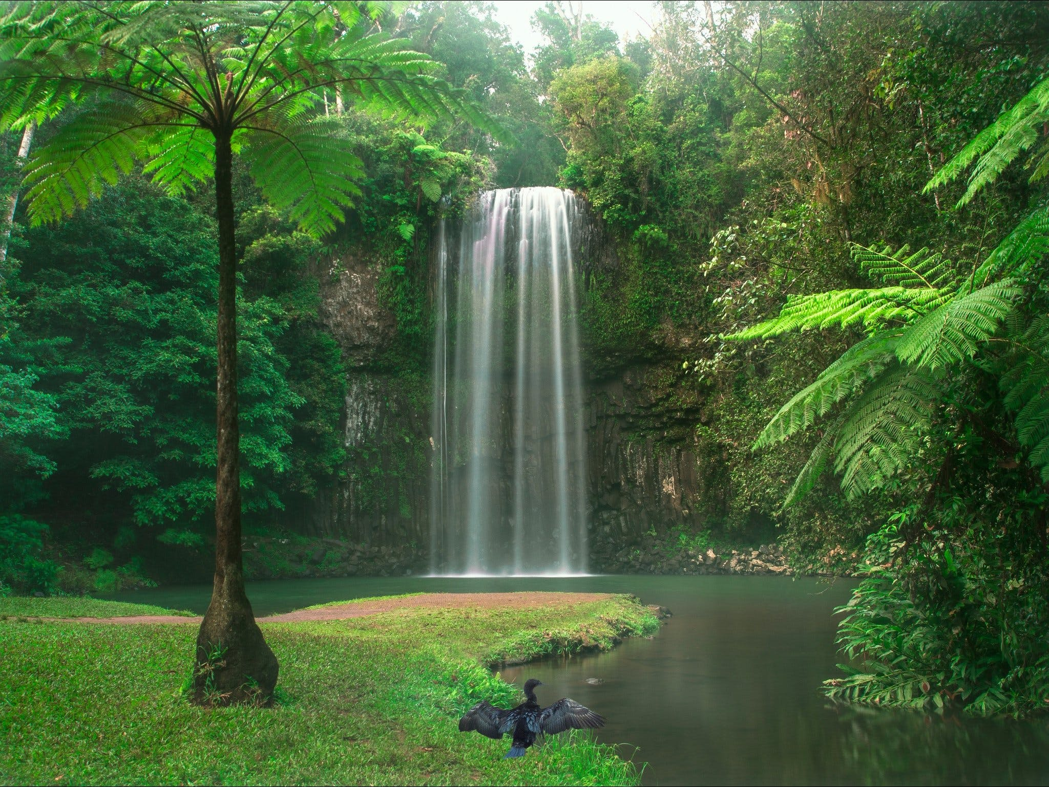 Atherton Tablelands - Find Attractions
