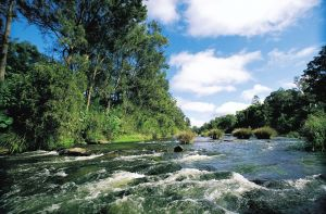 Richmond Valley Hinterland Self Drive Tour - Find Attractions
