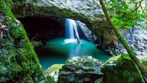 Springbrook - Find Attractions