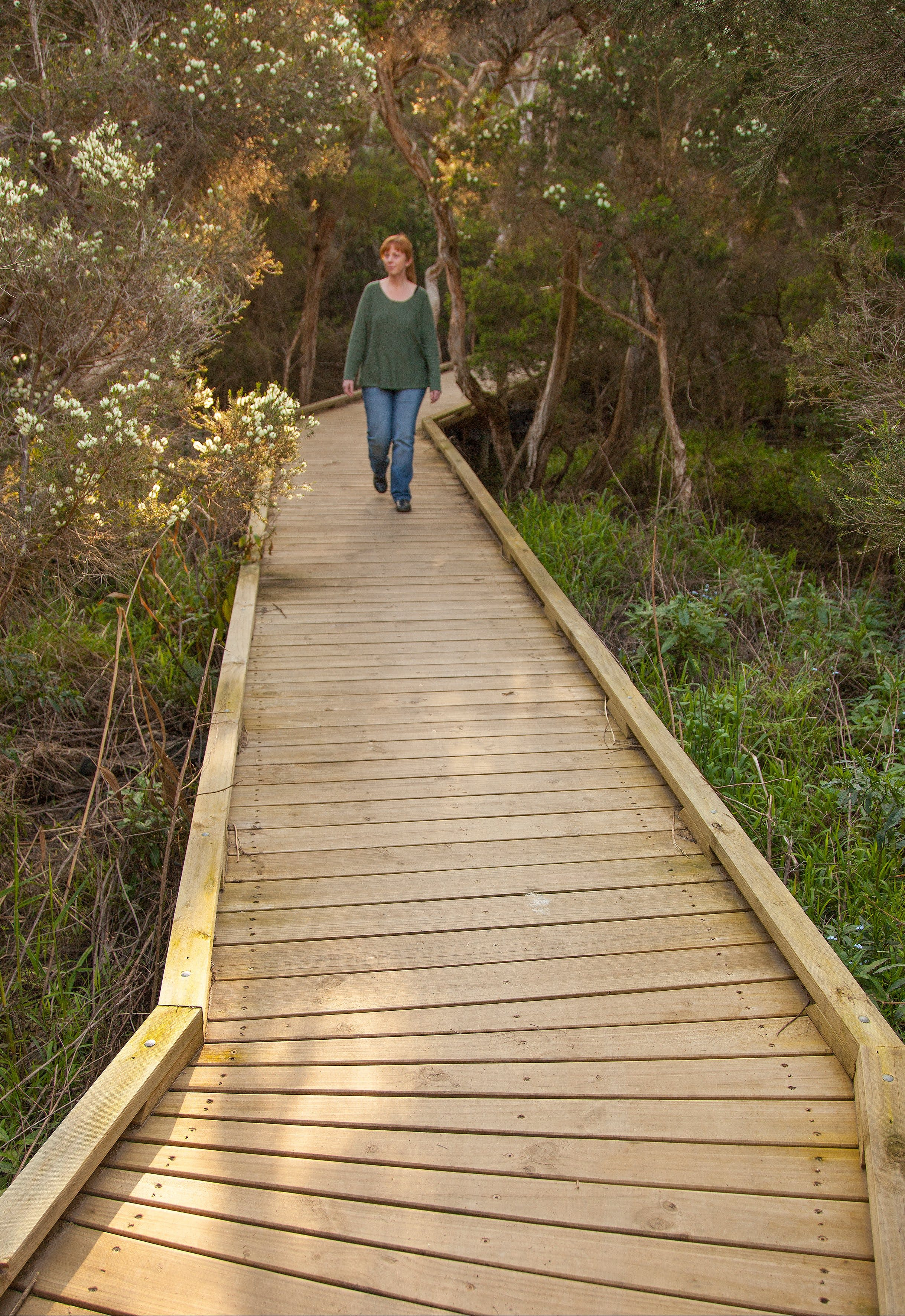 Balcombe Creek Estuary Boardwalk - Find Attractions