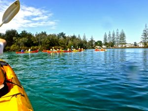 Byron Bay River Nature Kayak Tour - Find Attractions
