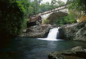 Mount Spec Paluma Range National Park - Find Attractions