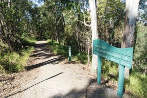 Mt Coot-tha Tourist Drive - Find Attractions