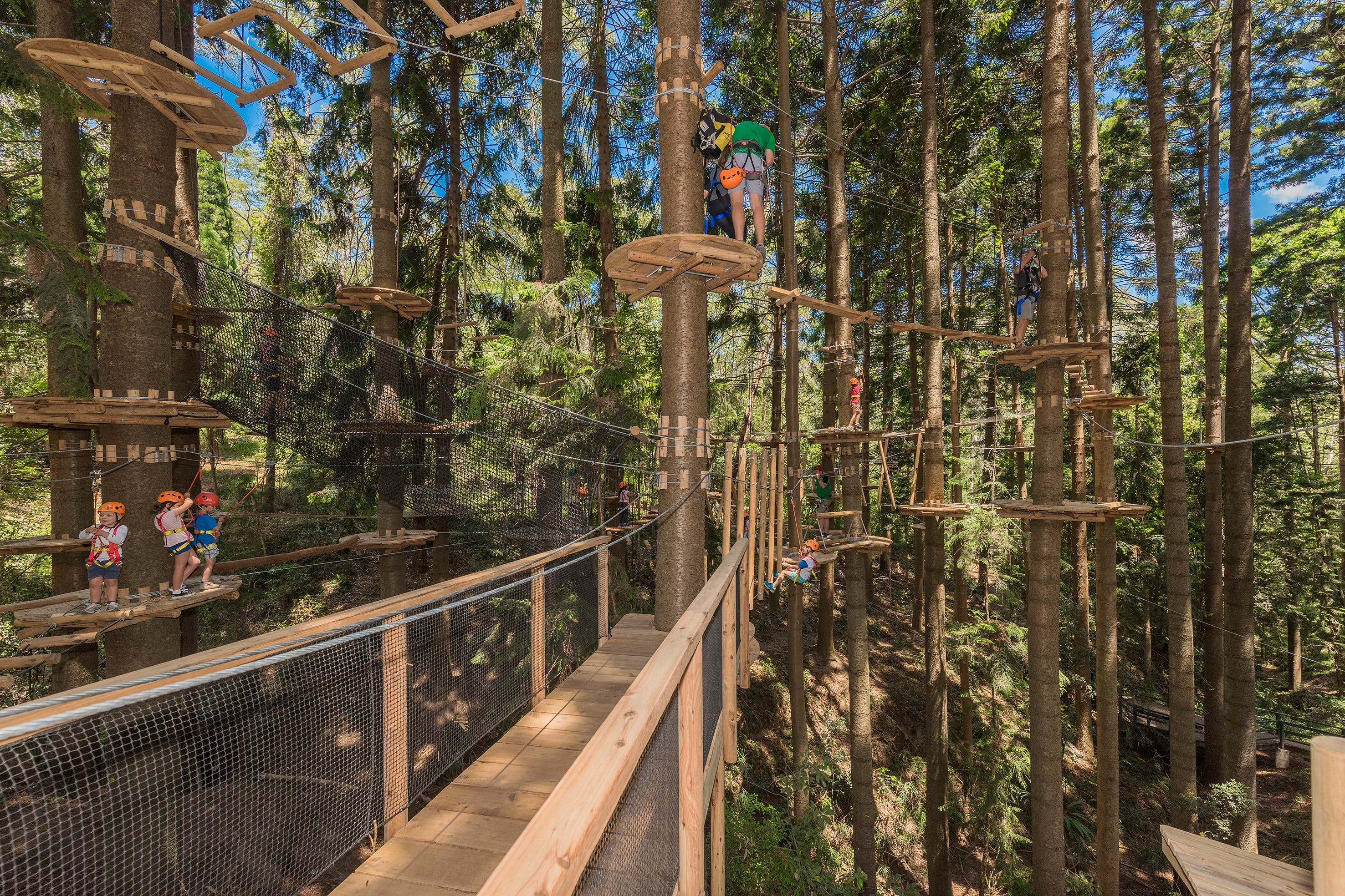 TreeTops Sydney The Hills - Find Attractions