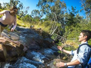 Yackandandah Gorge Scenic Walk - Find Attractions