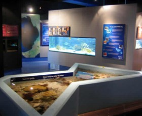 Marine and Freshwater Discovery Centre - Find Attractions