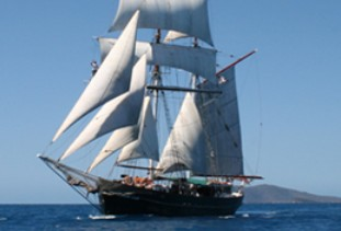 Australian Tallship Cruises - Find Attractions
