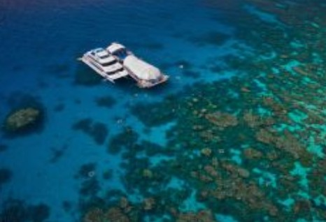 Great Adventures Reef and Green Island Cruises - Find Attractions