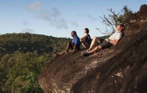 Cooktown Aboriginal Art Tours - Find Attractions