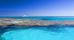 Reef Jet Cruises - Find Attractions